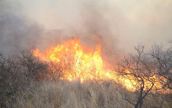 Infierno en las sierras. Autoridades y bomberos coinciden en que es el peor incendio forestal que recuerden.