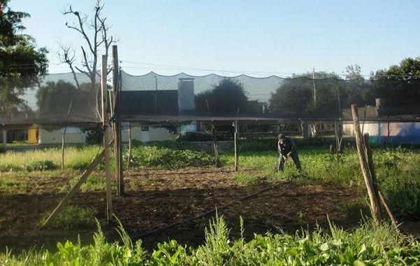 Venado, primera en implementar el programa Municipios Sustentables
