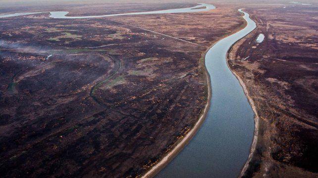 En 2020 el Delta perdió cerca de 300.000 hectáreas producto de los incendios.