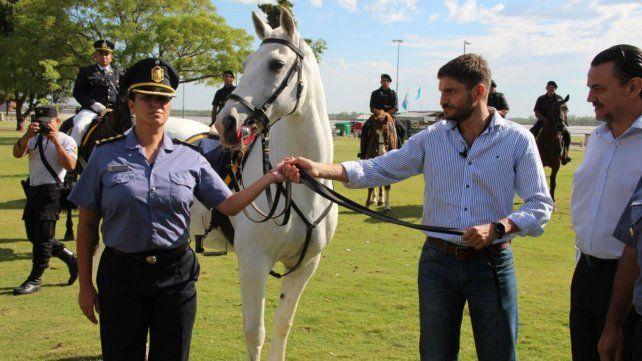 El ministro de Seguridad entregó 35 caballos para la policía de Rosario